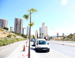 Benidorm is committed to the environment